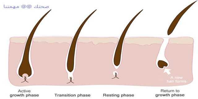 ما اسباب تساقط الشعر عند الشباب