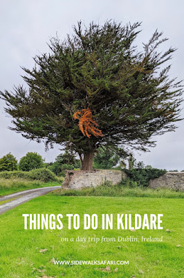 Things to do in Kildare Ireland