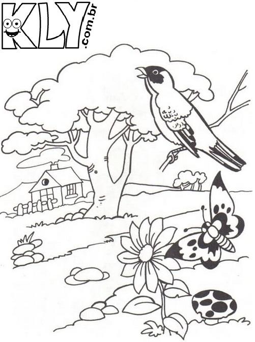 Imagens De Florestas Para Desenhar Yolanda S