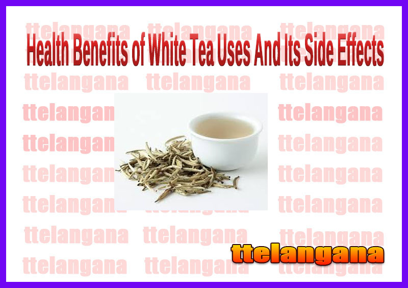 Health Benefits of White Tea Uses And Its Side Effects