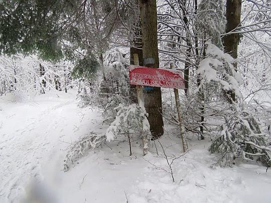 """Rezerwat przyrody """"Źródliska Jasiołki""""."""