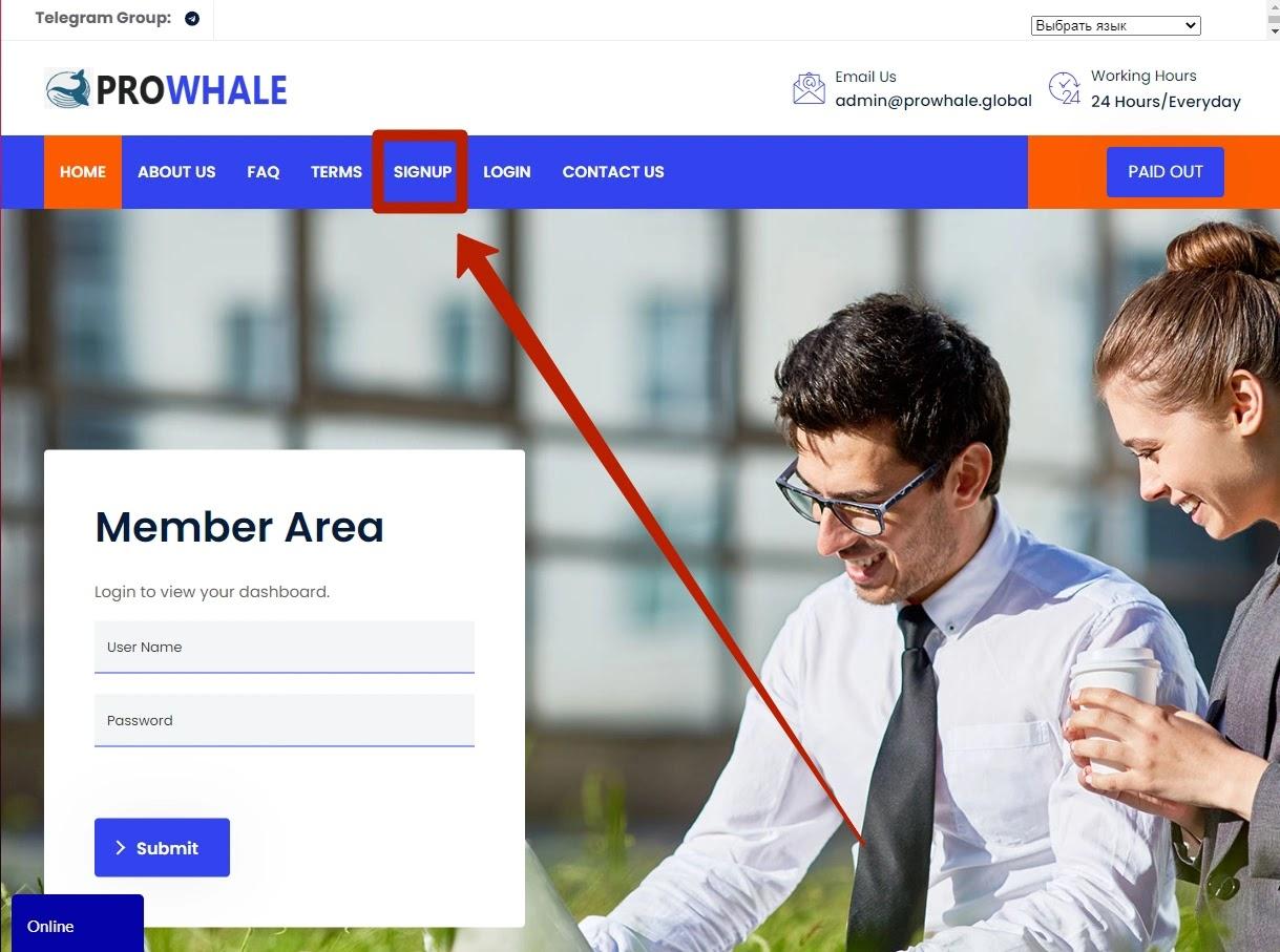 Регистрация в Prowhale Global