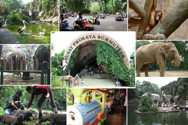 Wisata Kebun Binatang Ragunan Jakarta Selatan