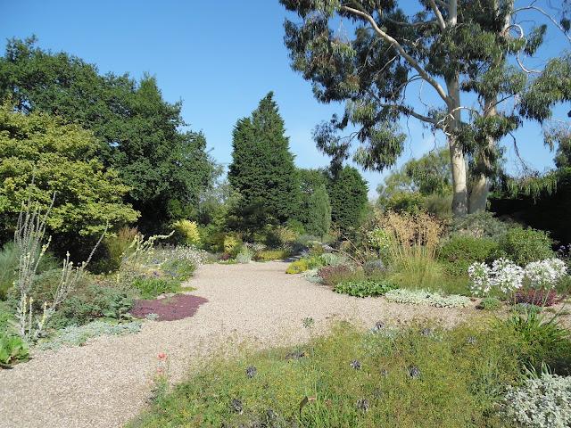 suchy ogród, żwirowe ścieżki