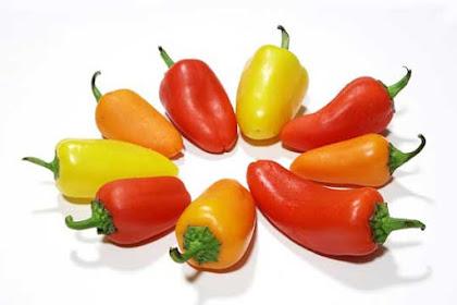 5 Manfaat mengkonsumsi makanan dan sayuran mentah bagi kesehatan