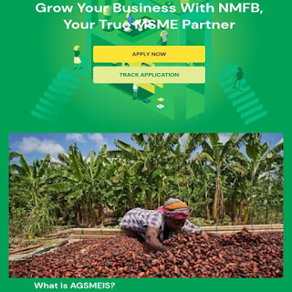 Federal Government CBN AGSMEIS Loan Scheme for Nigerian Entrepreneurs