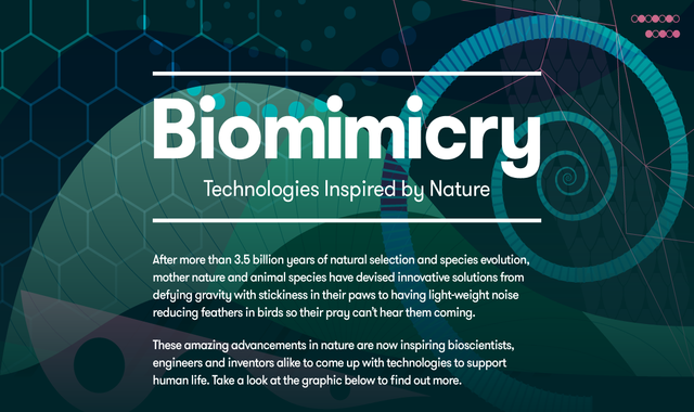 Biomimicry: Technology inspired by Nature