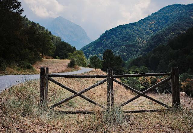 Puerta en un camino
