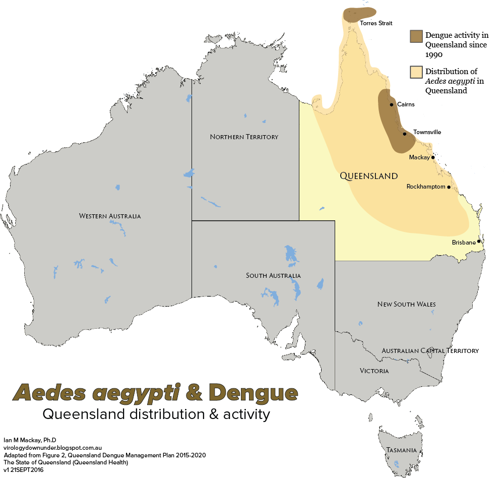 Map Of Austarlia, The Reach Of Aedes Aegypti In Queensland Australia, Map Of Austarlia