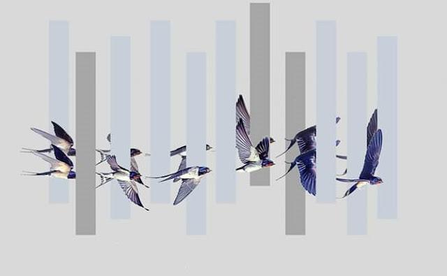 """""""Οι Ερμής"""": Μία παράσταση βασισμένη στις τεχνικές του θεάτρου της επινόησης στο Ναύπλιο"""