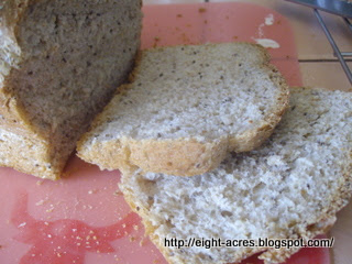 eight acres: homemade bread