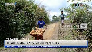 Akses Jalan Semakin Bagus Pengangkutan Hasil Pertanian Di Desa Aeknauli Semakin Bagus