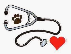 مرض الايرليخيا في الكلاب-Ehrlichiosis in Dogs