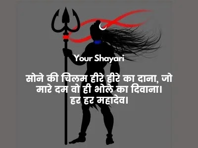 quotes on shiva
