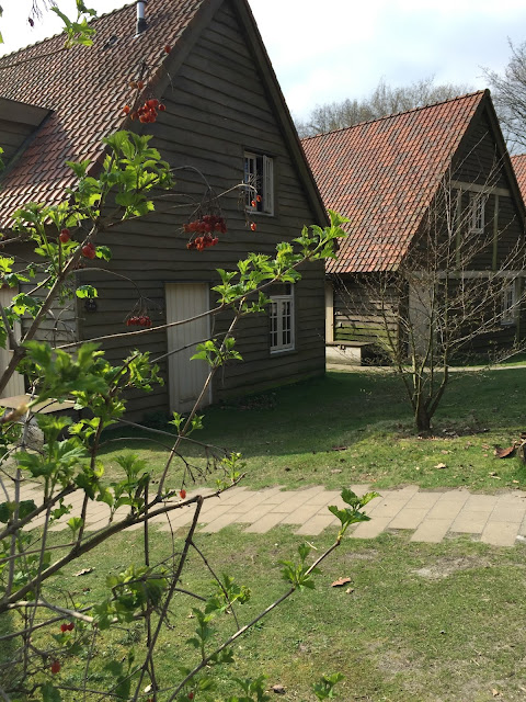 einzelne häuser in Bosrijk