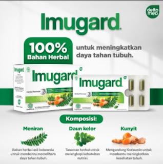 imugard bahan herbal untuk imunitas