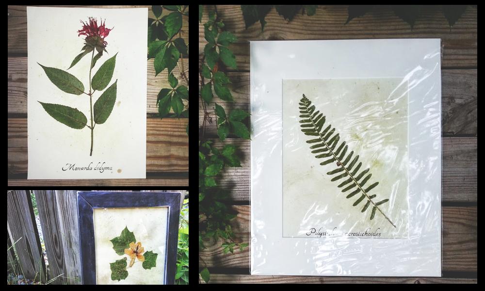 3 image layout of ecobota art items