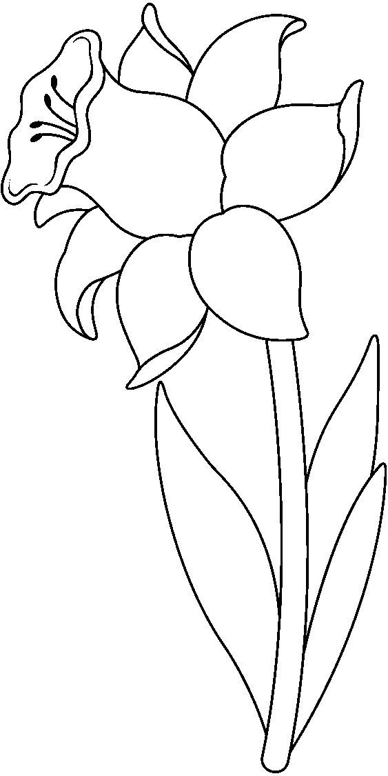 Tranh tô màu bông hoa dễ thương