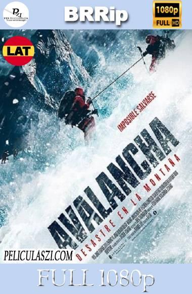 Avalancha, Desastre en la Montaña (2019) Full HD BRRip 1080p Dual-Latino