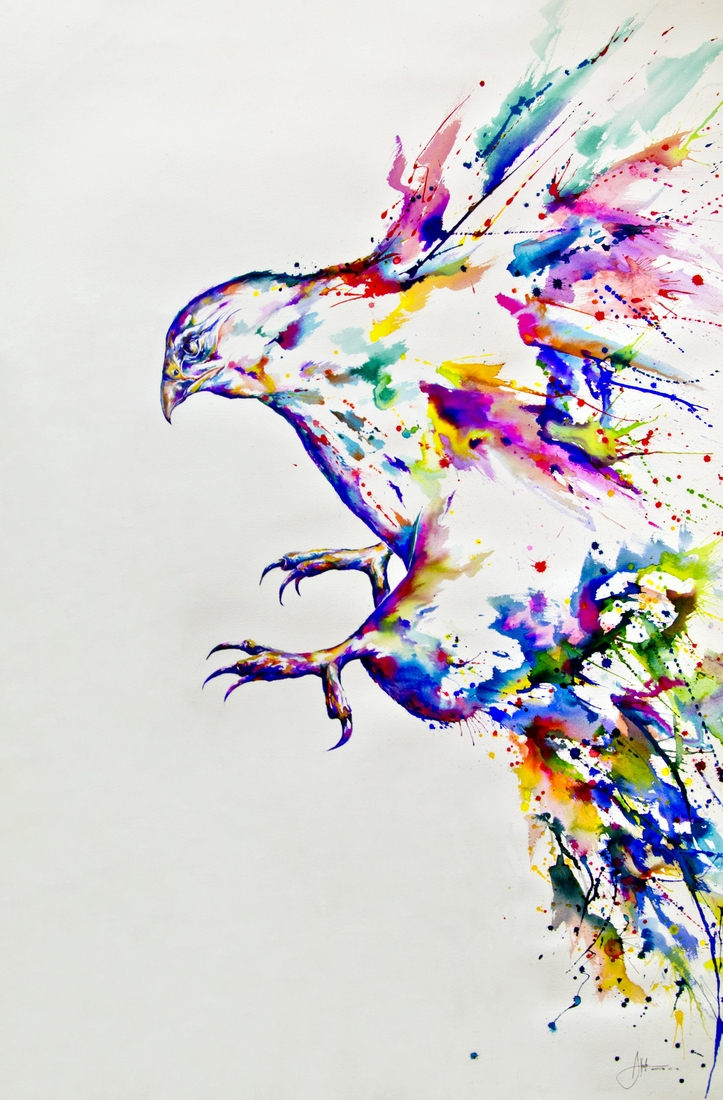 06-Falcon-Marc-Allante-Wild-Animal-Paintings-with-a-Splash-of-Color-www-designstack-co