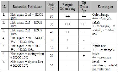 No 3 Asesment Biologi SMA Latihan (UN) Program IPA (Bagian 3)
