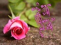 rose day image download