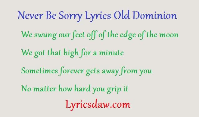 Оld Dоmіnіоn Never Be Sorry Lyrics