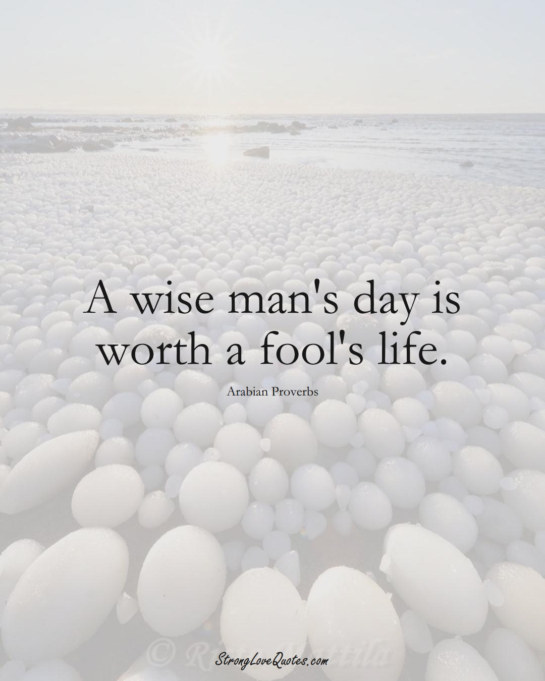 A wise man's day is worth a fool's life. (Arabian Sayings);  #aVarietyofCulturesSayings