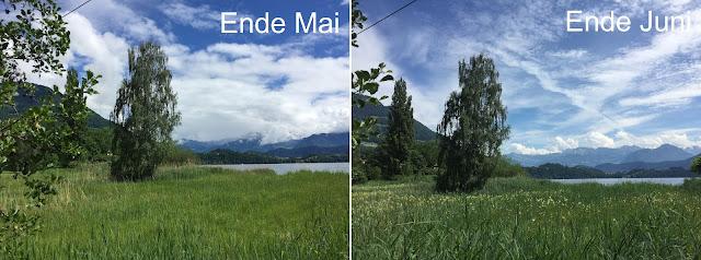 Zwei Bilder vom Naturschutzgebiet