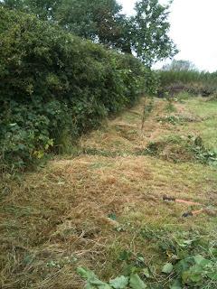 gardening, life on pig row