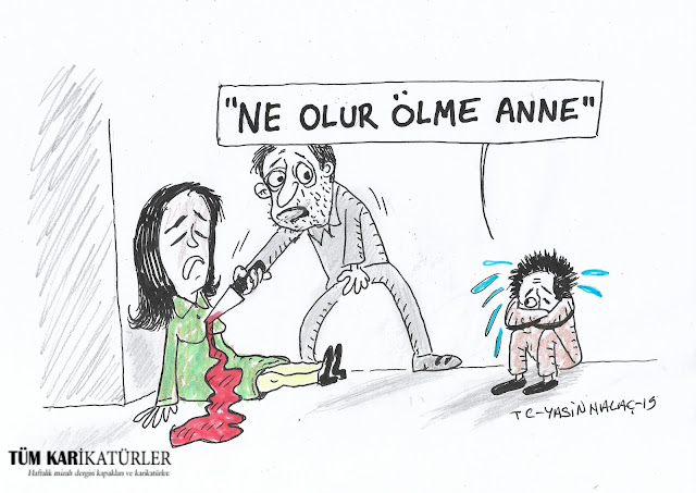 emine bulut karikatürü