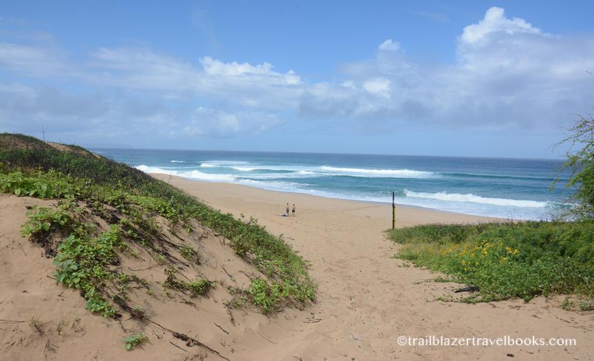 Woof Barking Sands Beach
