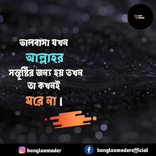 Love Quotes in Bengali| Islamic quotes Bangla