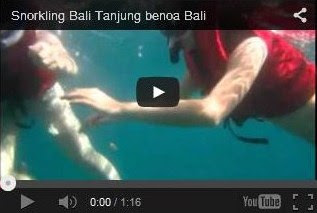 Snorkling Bali Tanjung Benoa