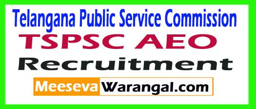 TSPSC AEO Recruitment 2017