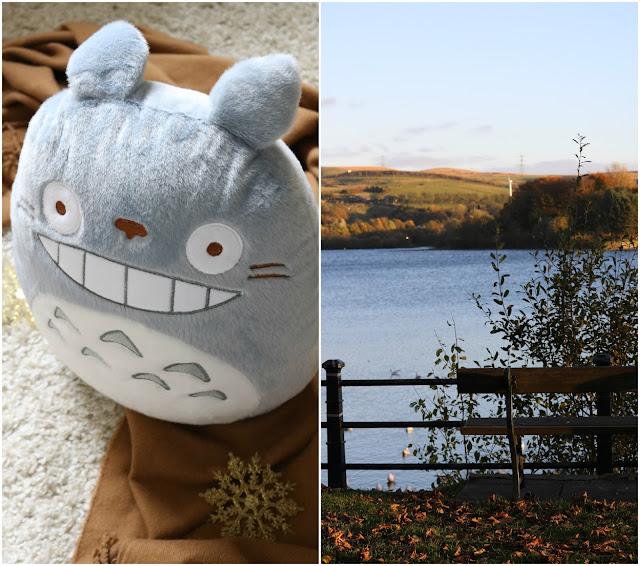 Cozy Autumn OOTD + Totoro