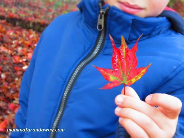 autunno inglese