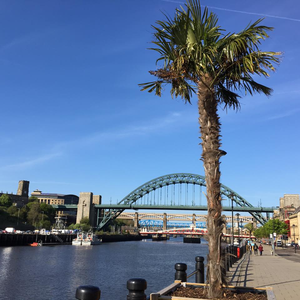 10 Places To Visit | Newcastle - Gateshead Quayside - Quayside in Sun