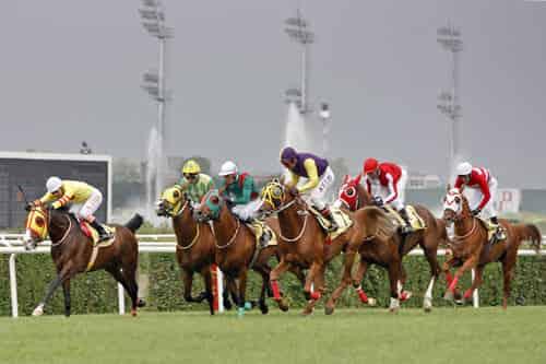 25 Eylül İzmir At Yarışı Galopları