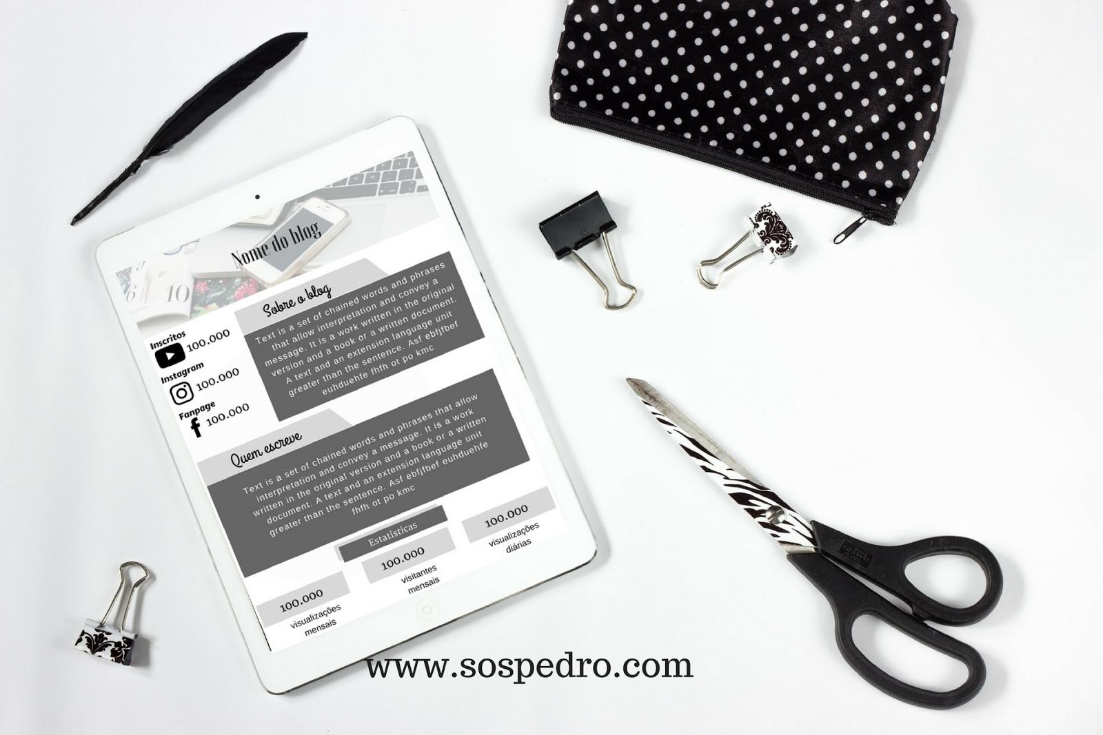 Download de midia kit editavel