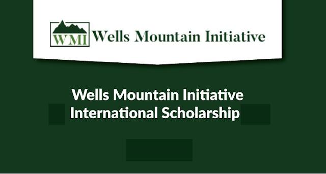 منحة مقدمة من مؤسسة ويلز ماونتن Wells Mountain لطلبة البكالوريوس في دول العالم النامي