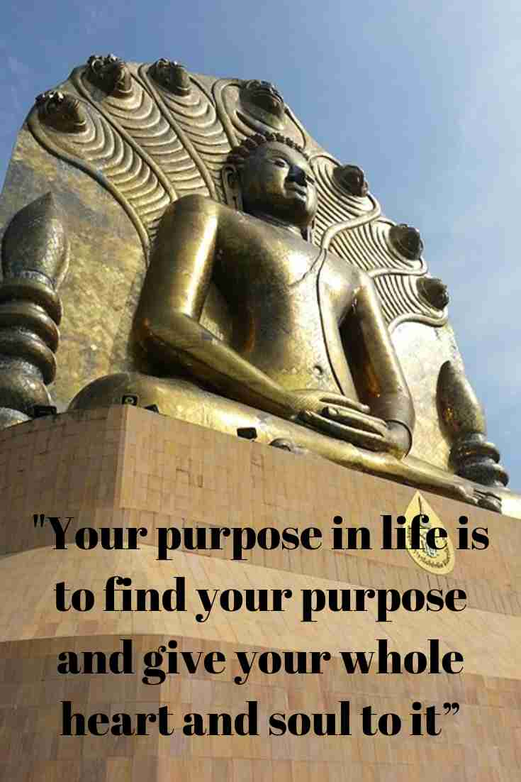 Your purpose in life is to find your purpose and give your whole heart and soul to it