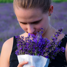6 Jenis Bunga yang Menjadi Primadona dalam Memelihara Kecantikan