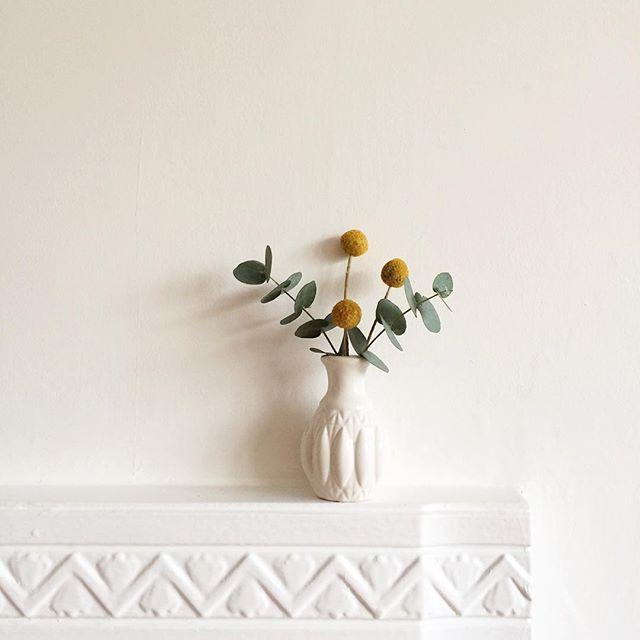 http://www.showhome.nl/inspiratie/hippe-bloemen-van-dit-moment-craspedia-globosa/