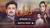 Daldal Episode 12 HUM TV Drama - 2 November 2017
