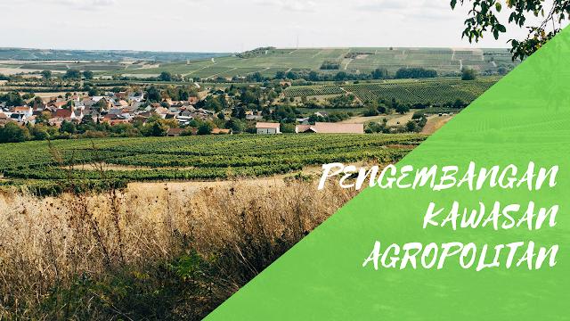 Strategi Pengembangan Kawasan Agropolitan