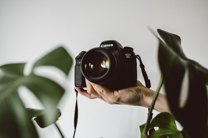 What You Need To Know About Being A Professional Photographer