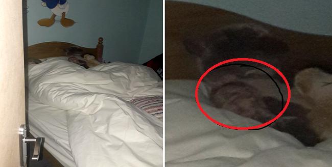 Ο Σκωτσέζος που είδε ένα απόκοσμο κεφάλι στο κρεβάτι της κόρης του!