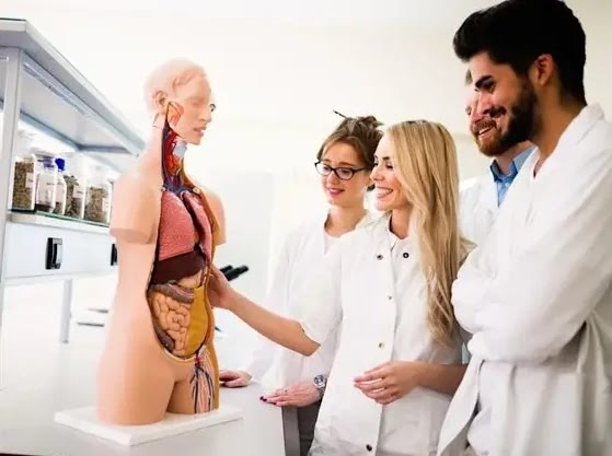 How Good Is Your Basic Medical Knowledge?
