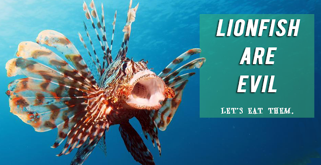 lionfish are evil let's eat them